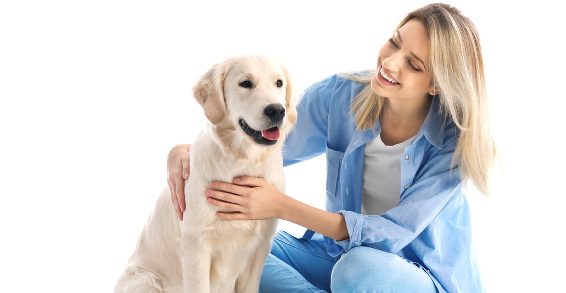 Introduction to Animal Care Certificate