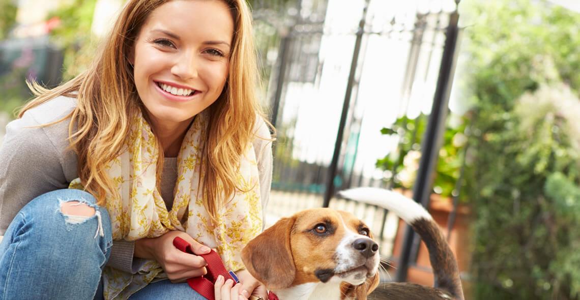 Pet Sitting and Dog Walking Diploma
