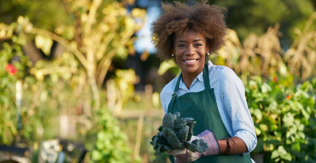 Garden Design and Maintenance Diploma